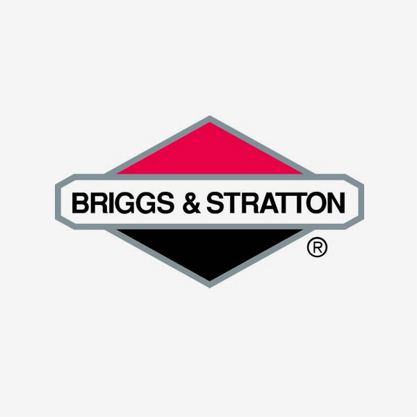 BRIGGS AND STRATION
